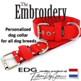Tomato Red Standard or Personalized Embroidered Dog Collar 2 inch - 5cm