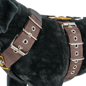 Dog harness 5cm blue by extreme dog gear