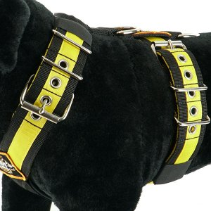 Custom dog harness 5cm black yellow by extreme dog gear