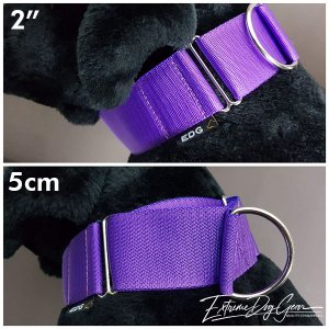 2 inch martingale collar large breed