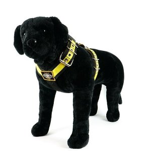 Custom dog harness 2 inch black yellow by extreme dog gear