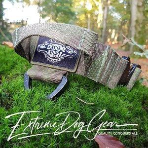 A TACS FG Tactical Dog Collar