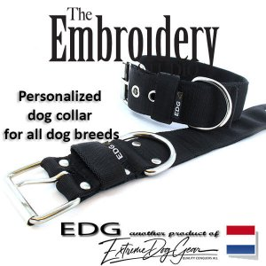 Black Standard or Personalized Embroidered Dog Collar 2 inch - 5cm