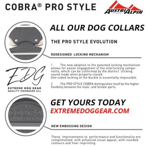k9 collar cobra buckle