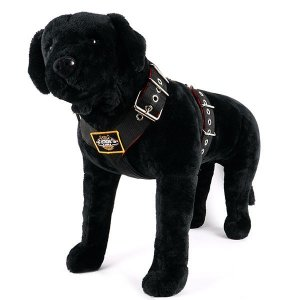 Color between dog harness 2 inch black red