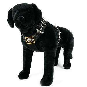 Custom dog harness 2 inch reflective black by extreme dog gear