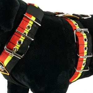 Custom dog harness 2 inch red yellow black by extreme dog gear