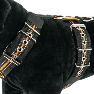 Custom dog harness 5cm reflective orange by extreme dog gear