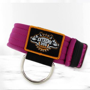 softshell cyclamen dog collar
