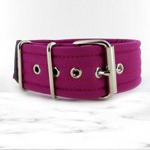 softshell cyclamen extreme dog collar
