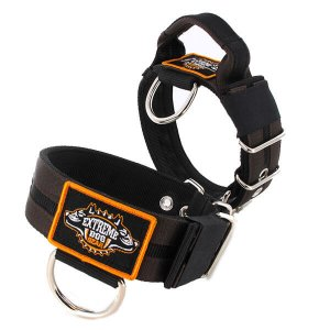 Double Brown custom dog collar 2 inch 5cm with handle extreme dog gear