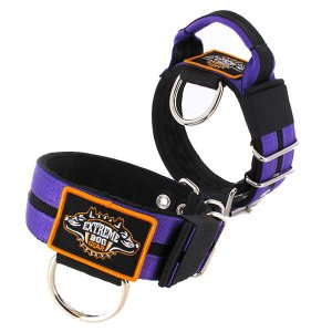 Double Purple custom dog collar 2 inch 5cm with handle extreme dog gear
