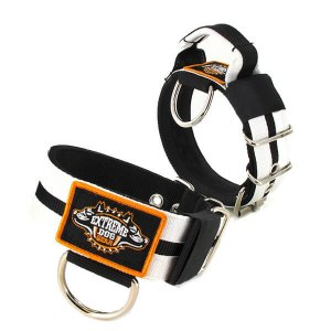 Double White custom dog collar 2 inch 5cm with handle extreme dog gear