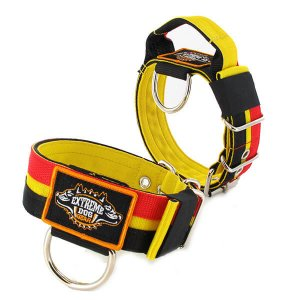 Belgium Flag custom dog collar 2 inch 5cm with handle extreme dog gear