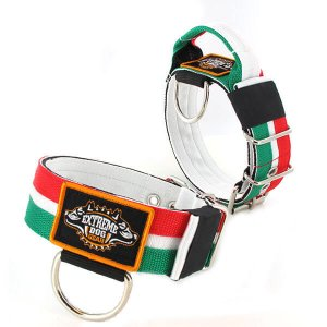 Italy Flag custom dog collar 2 inch 5cm with handle extreme dog gear
