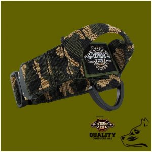 k9 dog collar cobra buckle tactital gear