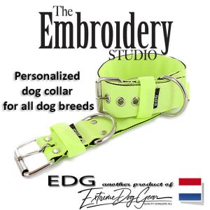 Fluor Standard or Personalized Embroidered Dog Collar 2 inch - 5cm
