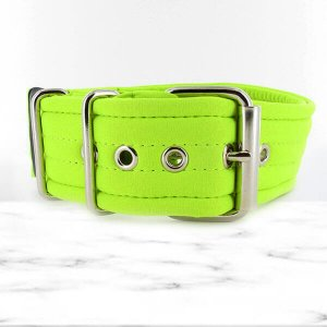 softshell fluor extreme dog collar