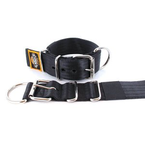 black seat belt kennel dog collar