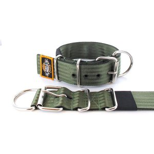 olive seat belt kennel dog collar