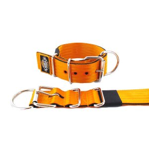 orange seat belt kennel dog collar