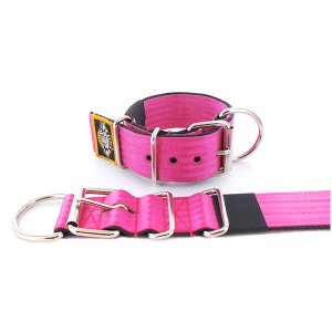pink seat belt kennel dog collar