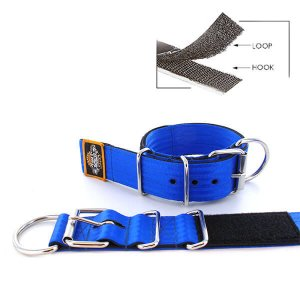 blue seat belt kennel keeper dog collar