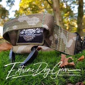 Multicam Dog Collar with cobra buckle