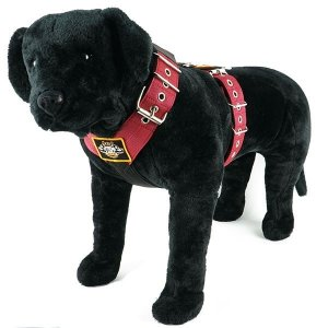 Dog harness 2 inch bordeaux by extreme dog gear