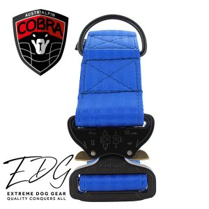 blue cobra dog collar