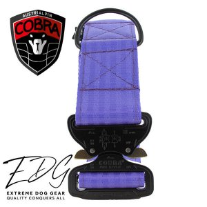 purple blue cobra dog collar