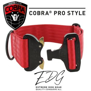 red cobra buckle collar