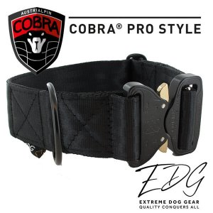 black cobra buckle collar