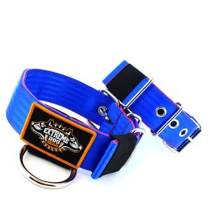 Custom Old School Seatbelt Dog Collar Blue Pink