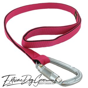 strong dog leash fuchsia lead