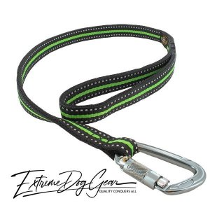 reflection strong dog leash green lead