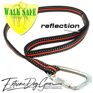 reflective dog leash orange lead