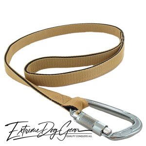 strong dog leash sand lead