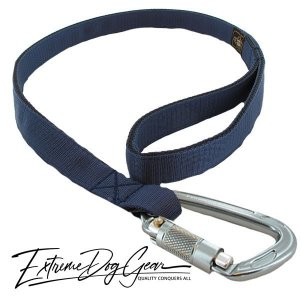 strong dog leash steel blue lead