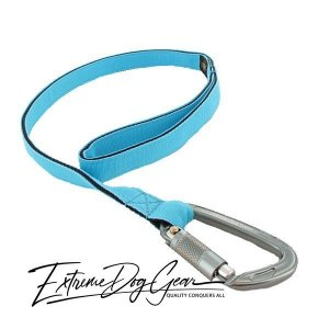 strong dog leash turquiose lead