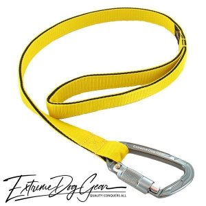 strong dog leash yellow lead