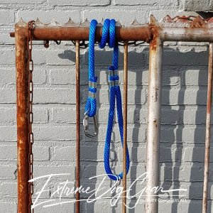 dog rope leash blue