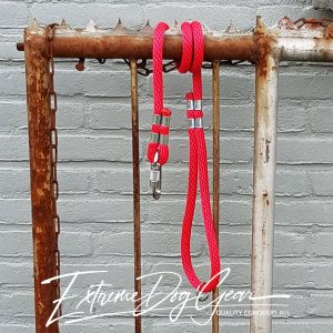 dog rope leash red
