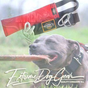 solo tugger extreme dog gear