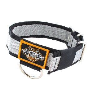 grey nylon dog collar stripe