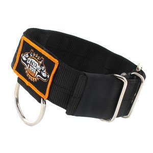dog collar 4 layer black nylon heavy duty 2 inch 5 cm