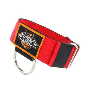 dog collar red nylon heavy duty 2 inch width 5cm