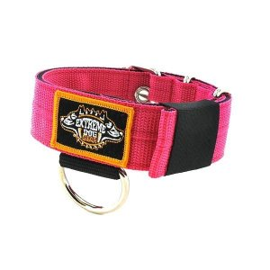 hot pink 1.6 inch heavy duty dog collar