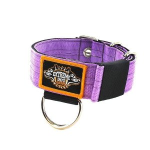 lavender 1.6 inch dog collar heavy duty