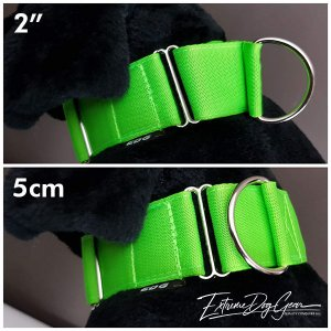 martingale collar large size breed
